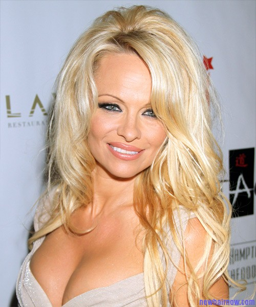 Pamela Anderson Hairstyle | New Hair Now