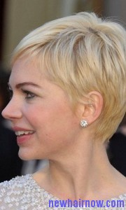 cropped pixie8