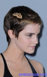 barrettes short hair3