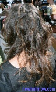 nested-hairstyle2